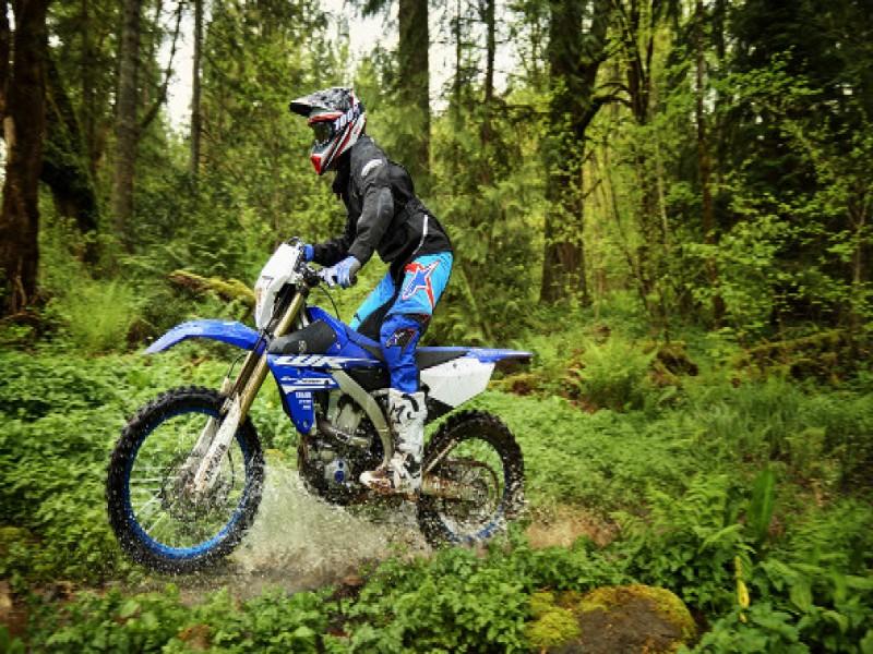 Blue Motors - Yamaha